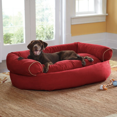 how to make a doggy couch