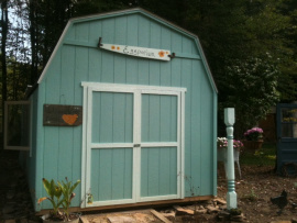 Blue chicken coup shed