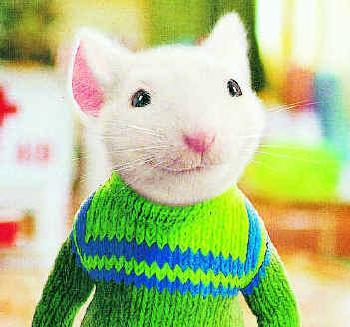 stuart little wearing a green sweater